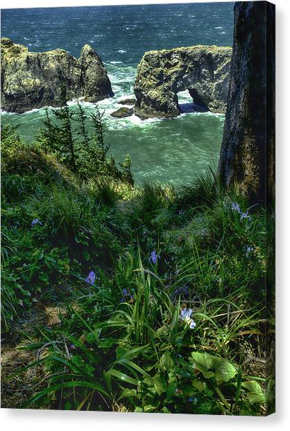 Arch Rock Delight Canvas Print
