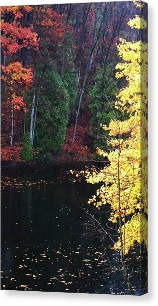 Ardent Canvas Print