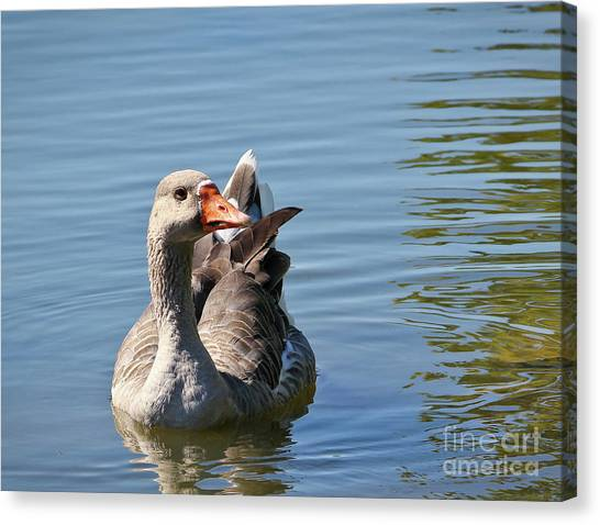 Are You Talking To Me Canvas Print
