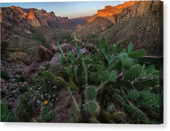 Desert Sunrises Canvas Print - Arizona Apache Trail Sunset by Dave Dilli