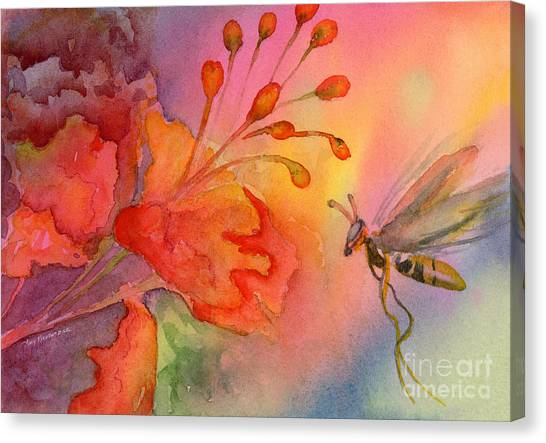 Wasp.insect Canvas Print - Arizona Fairy by Amy Kirkpatrick