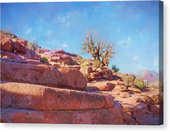 Canvas Print - Arizona Landscape by Impressionist Art