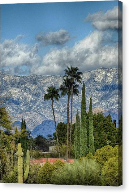 Arizona Snow Canvas Print