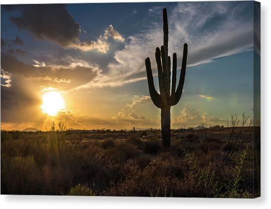 Arizona Vibes Canvas Print