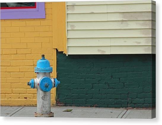 Arlington Hydrant Canvas Print by Art Ferrier