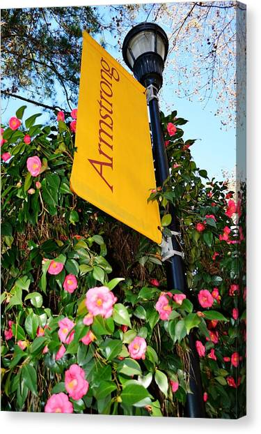 Georgia State University Canvas Print - Armstrong State University Banner by Linda Covino