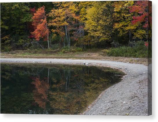 Walden Pond Canvas Print - Around The Bend- Hiking Walden Pond In Autumn by Toby McGuire