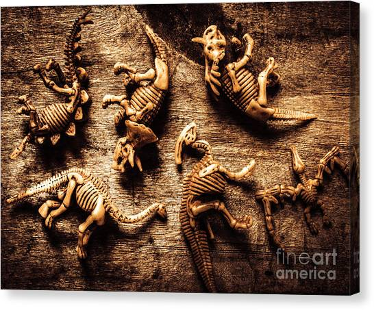 Biology Canvas Print - Art In Palaeontology by Jorgo Photography - Wall Art Gallery