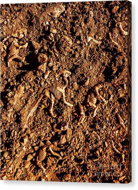 Geology Canvas Print - Art Of A Dinosaur Dig by Jorgo Photography - Wall Art Gallery