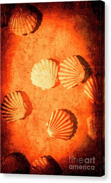 Clams Canvas Print - Art Of Lost Oceans by Jorgo Photography - Wall Art Gallery