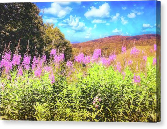 Art Photo Of Vermont Rolling Hills With Pink Flowers In The Foreground Canvas Print