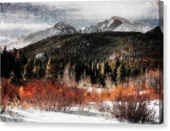 Art Series #4 Canvas Print by Garett Gabriel
