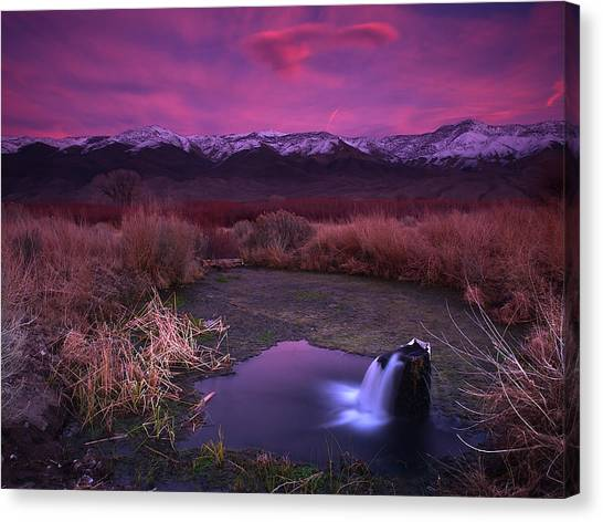 Artesian Sunset Canvas Print by Chris Morrison