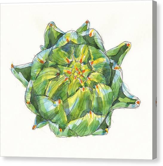 Artichoke Star Canvas Print