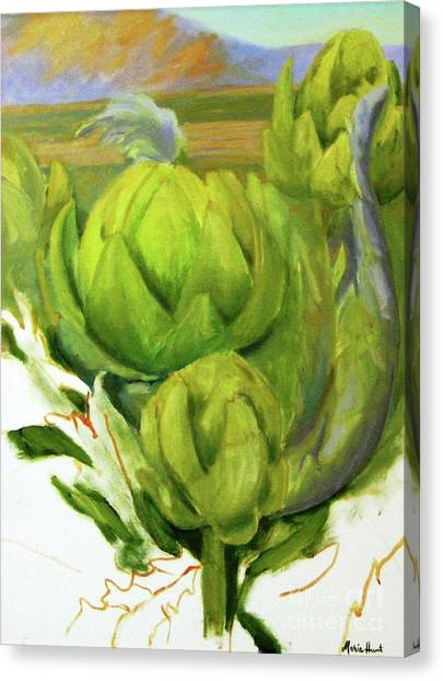 Artichoke Canvas Print - Artichoke  Unfinished by Maria Hunt