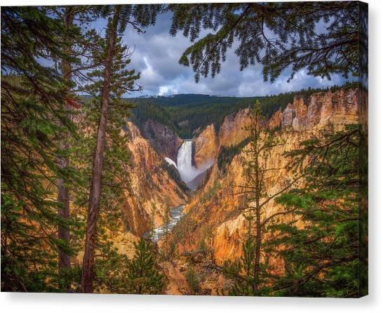 Yellowstone National Park Canvas Print - Artist Point Afternoon by Darren White