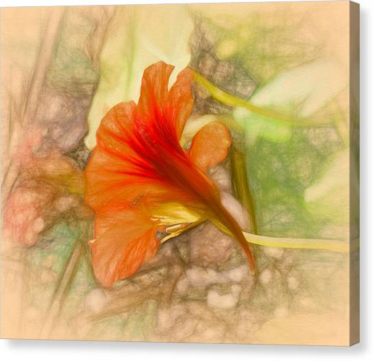 Canvas Print featuring the photograph Artistic Red And Orange by Leif Sohlman