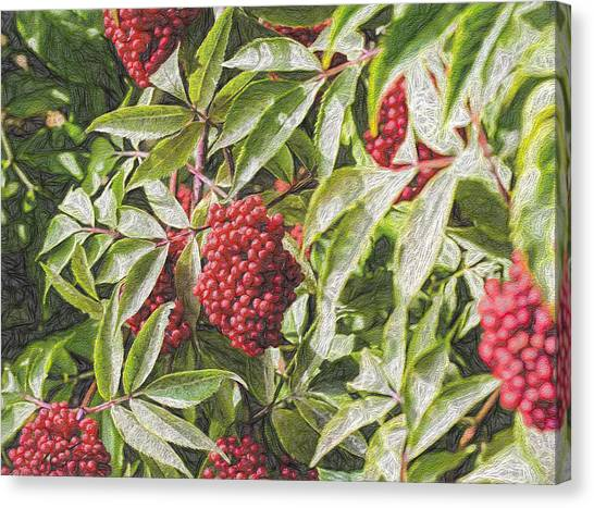 Wild Berries Canvas Print - Artistic Red by Leif Sohlman