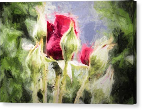 Canvas Print featuring the photograph Artistic Rose And Buds by Leif Sohlman