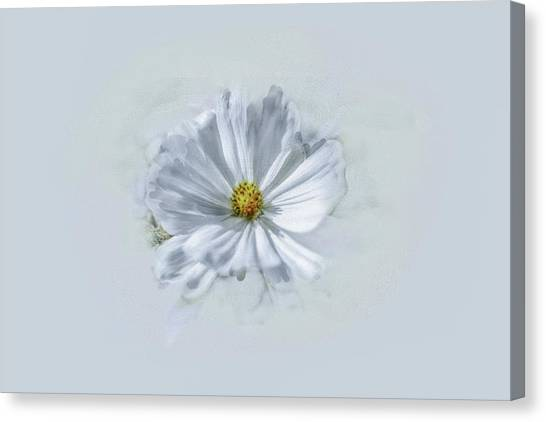 Artistic White #g1 Canvas Print
