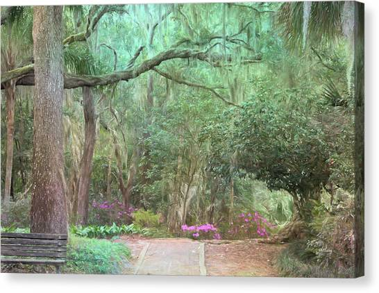 Ravine Gardens Canvas Prints   Fine Art America