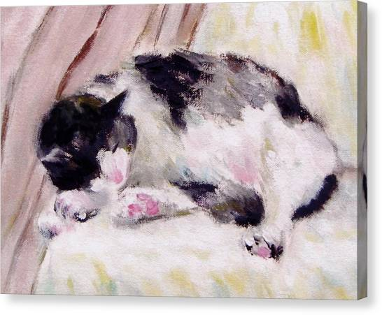 Artist's Cat Sleeping Canvas Print