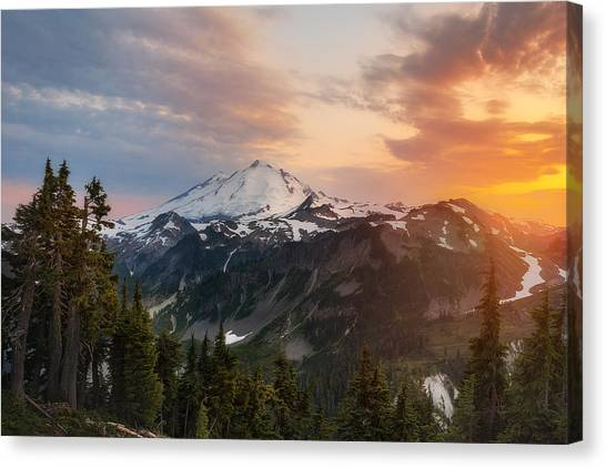 Artist's Inspiration Canvas Print