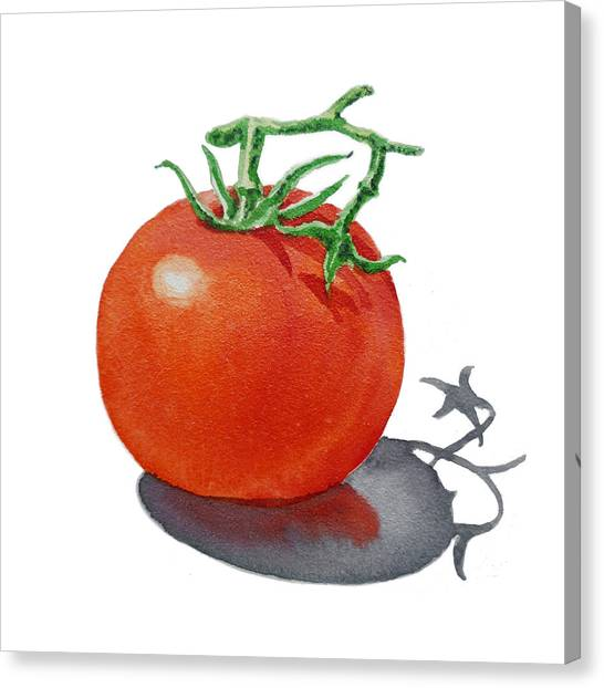 Artz Vitamins Tomato Canvas Print