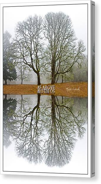 As Above So Below Iv Canvas Print