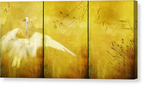 As Birds Fly Up..... Canvas Print