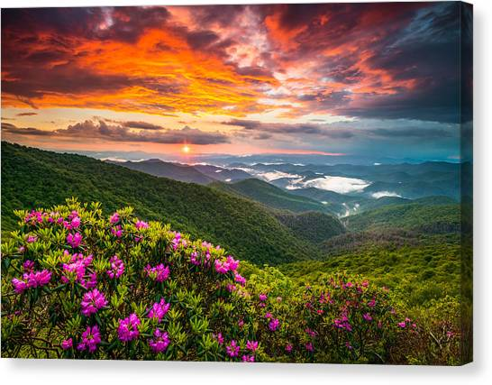 Blue Ridge Parkway Canvas Print - Asheville North Carolina Blue Ridge Parkway Scenic Sunset by Dave Allen
