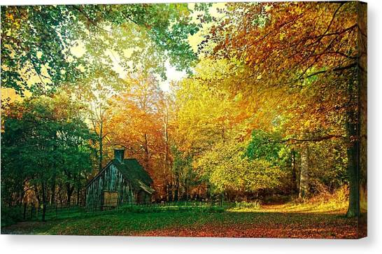Ashridge Autumn Canvas Print