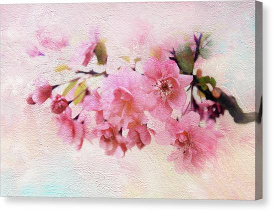 Tree Blossoms Canvas Print - Asian Apple by Jessica Jenney