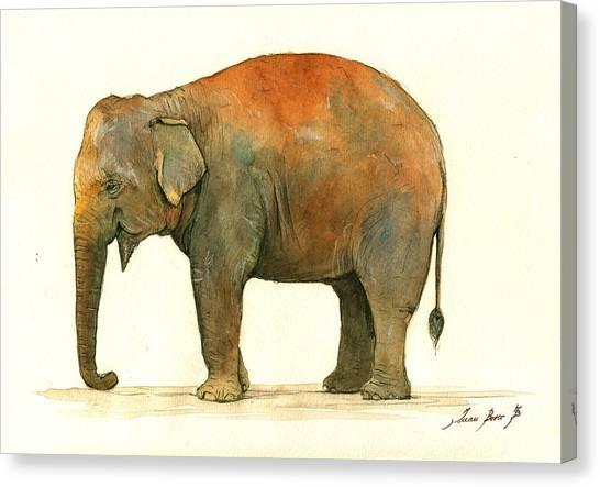 Asian Canvas Print - Asian Elephant by Juan Bosco