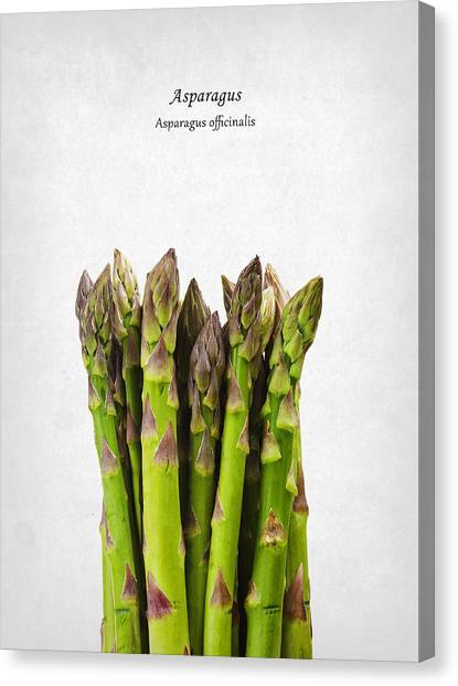 Asparagus Canvas Print - Asparagus by Mark Rogan