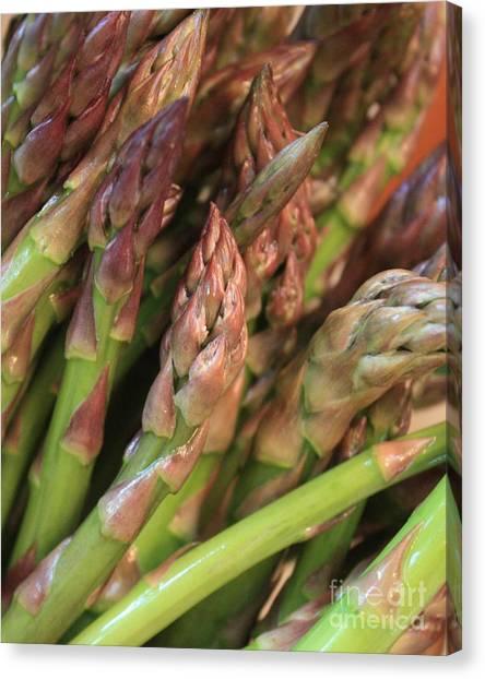 Asparagus Canvas Print - Asparagus Tips 2 by Carol Groenen