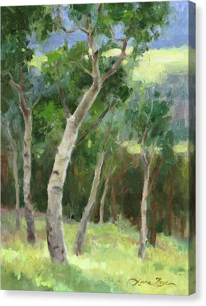 Park Scene Canvas Print - Aspen Grove I by Anna Rose Bain