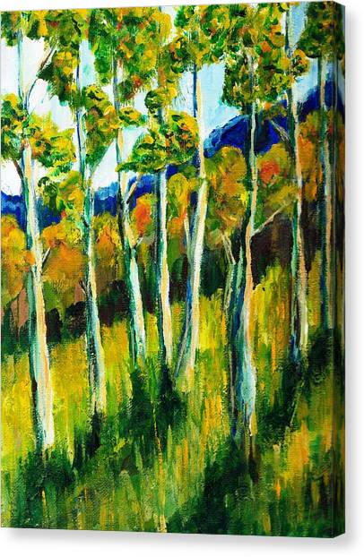 Aspen Highlands Canvas Print by Randy Sprout