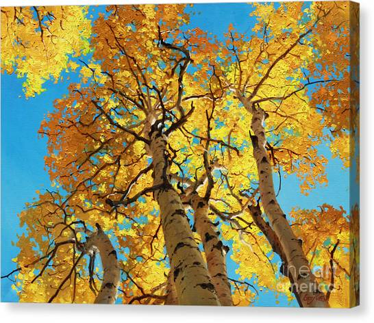 Kim Canvas Print - Aspen Sky High 2 by Gary Kim