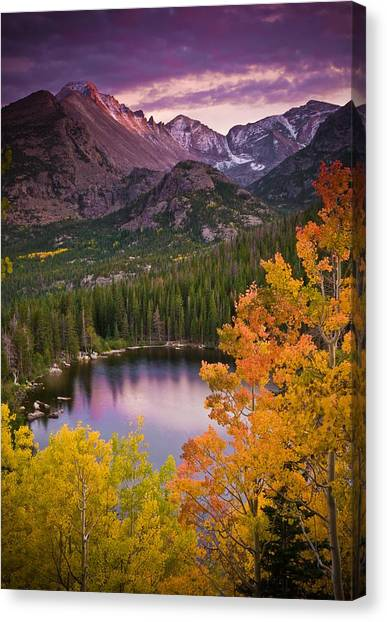 Rights Canvas Print - Aspen Sunset Over Bear Lake by Mike Berenson