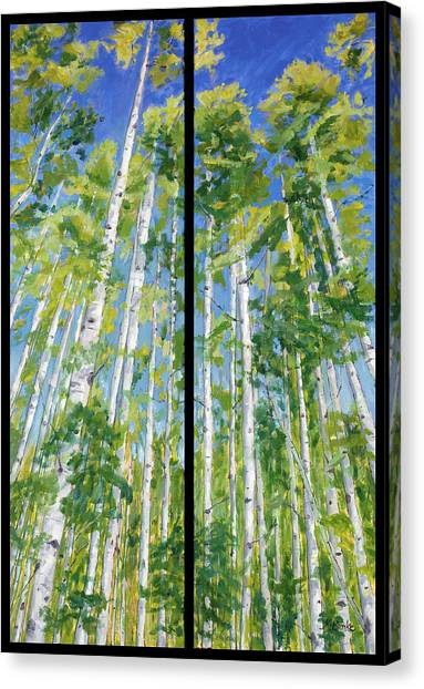Aspen Twin Perspectives Canvas Print
