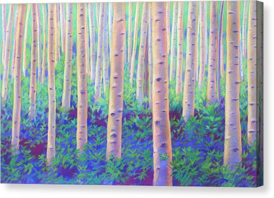Aspens In Aspen Canvas Print