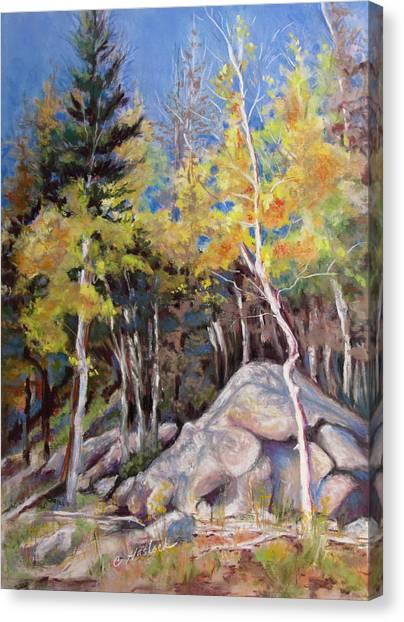 Aspens Near Bear Lake Canvas Print by Carole Haslock