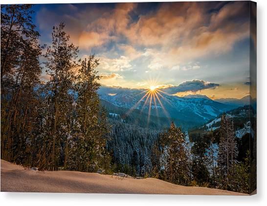 Aspens Sunset After Snowfall Canvas Print