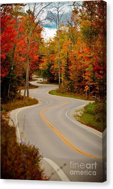 Asphalt Creek In Door County Canvas Print