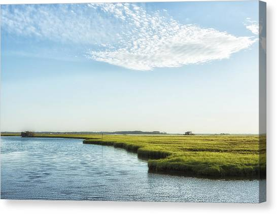 Canvas Print featuring the photograph Assateague Island by Belinda Greb