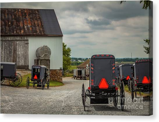 Assorted Amish Buggies At Barn Canvas Print