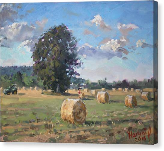 Georgetown University Canvas Print - At Cathy's Farm Georgetown by Ylli Haruni