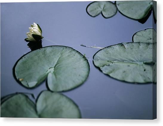 At Claude Monet's Water Garden 2 Canvas Print
