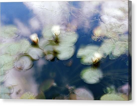 At Claude Monet's Water Garden 4 Canvas Print